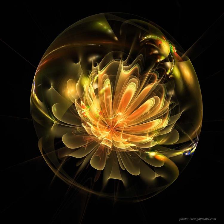 Yellow flower - Image 0