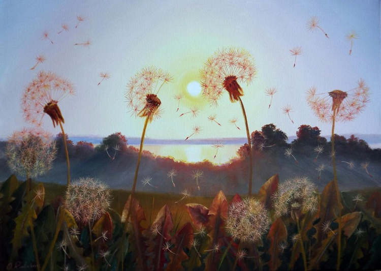 Sunset and Dandelions - Image 0