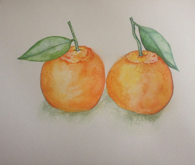 Two Tangerines Still Life Watercolour - Image 0