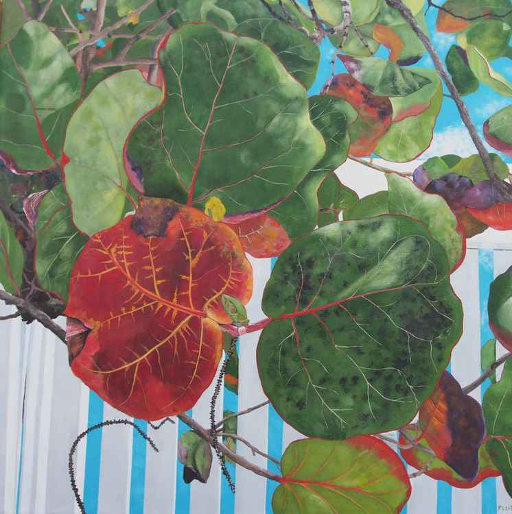 Floral Series 10 -