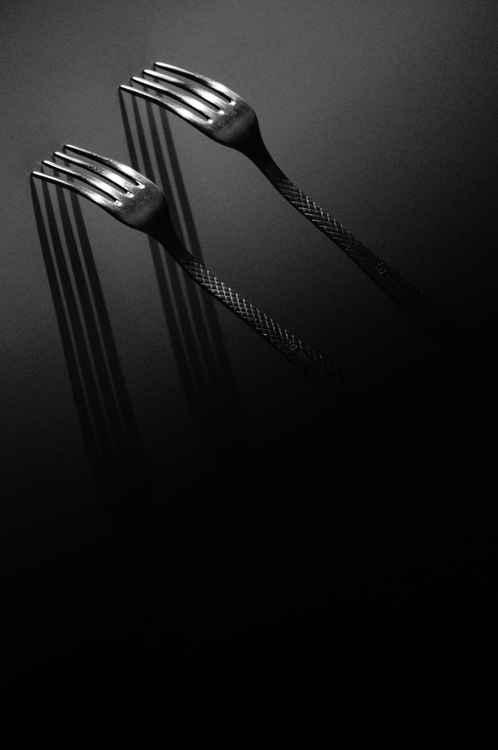 The kitchen secret shadows -