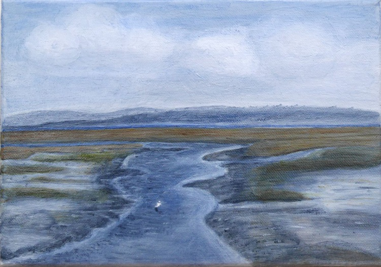Isle of Wight from Keyhaven Saltings - Image 0