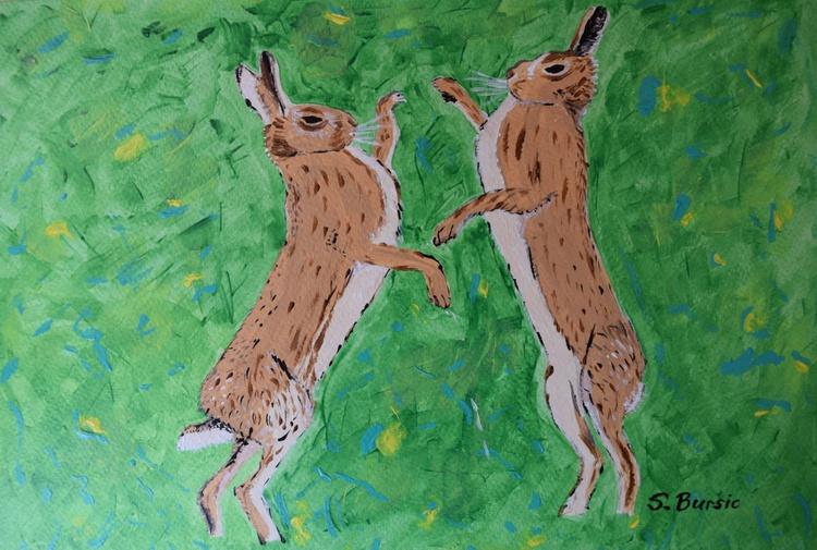 Boxing Hares in Field, countrywide rabbits - Image 0