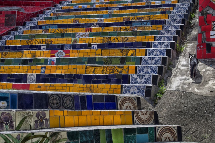 Escadaria Selarón + Cat - Image 0