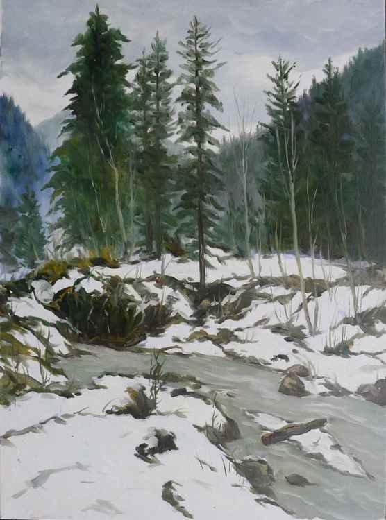Mountain river -
