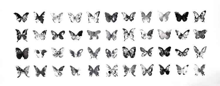 Fourty-four butterflies 7530BW2 (75 x 30 cm) -