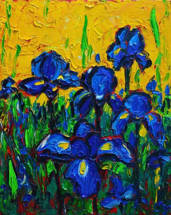 WILD BLUE IRISES IN SUNLIGHT