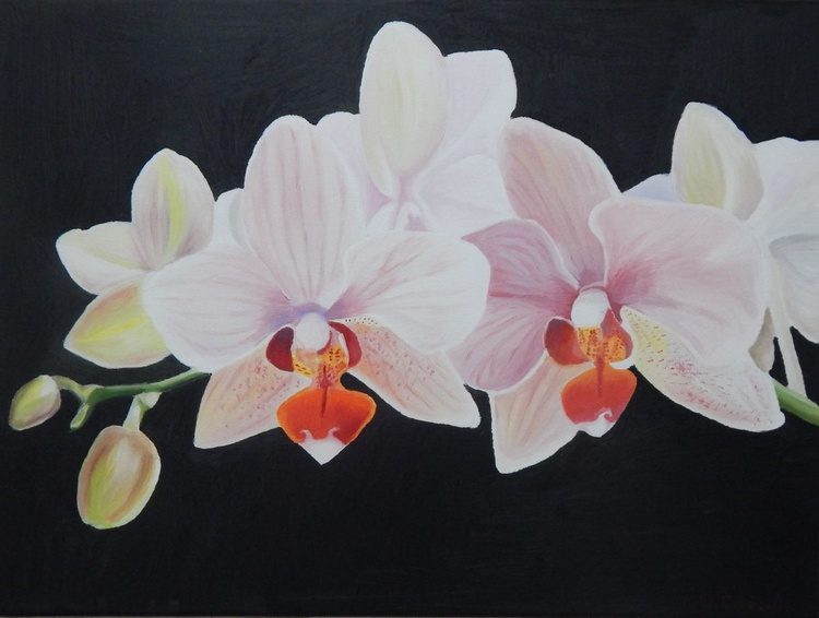 """''Blossom""""-oil on canvas painting orchid - Image 0"""