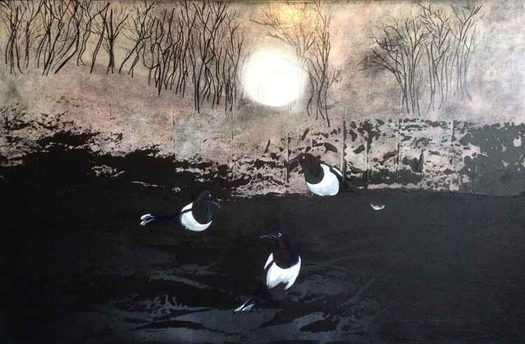 Nightscape Magpies -