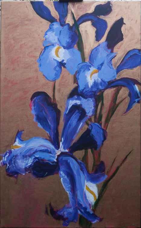 Blue Irises -