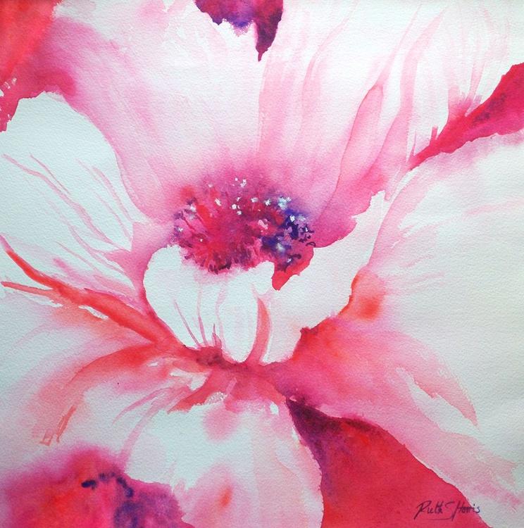 Rhapsody Pink Poppy - Image 0