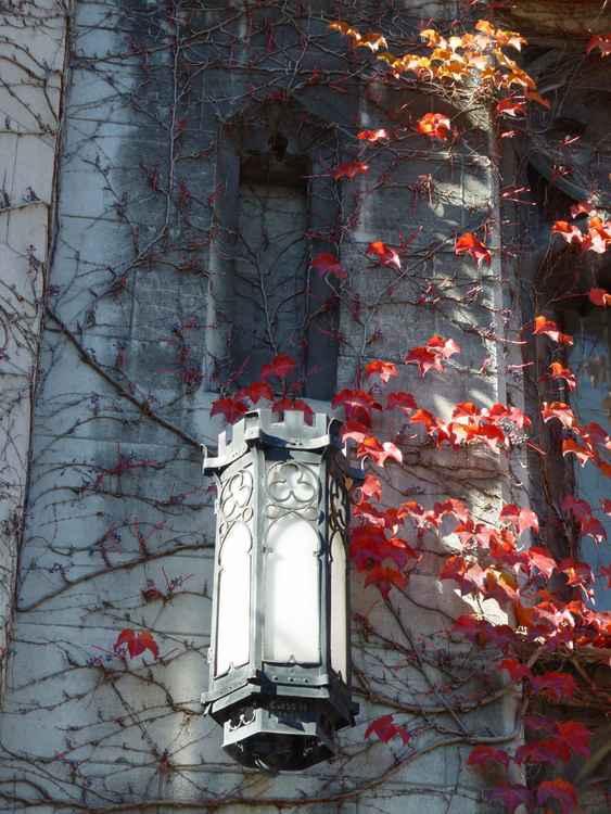 Cobb Hall Lamp, UChicago
