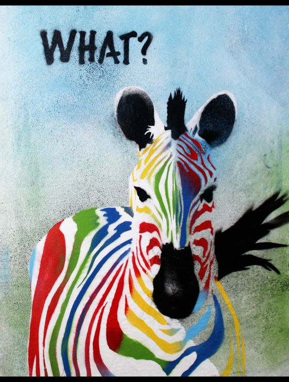 What? Zebra (on The Daily Telegraph) - Image 0