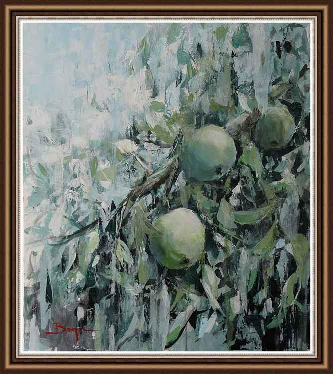 Apples -