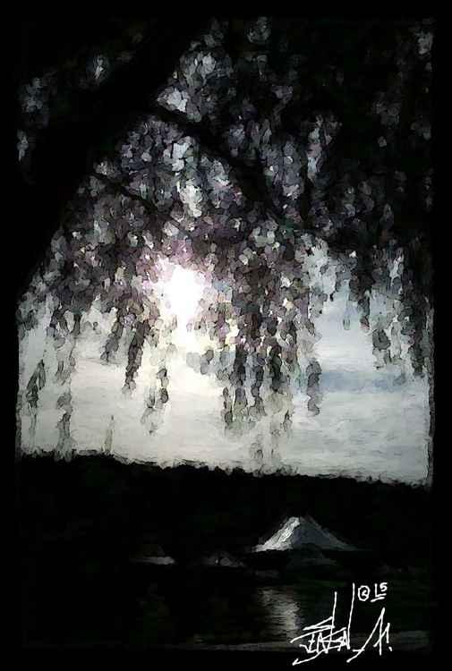 SUN IN TREE -