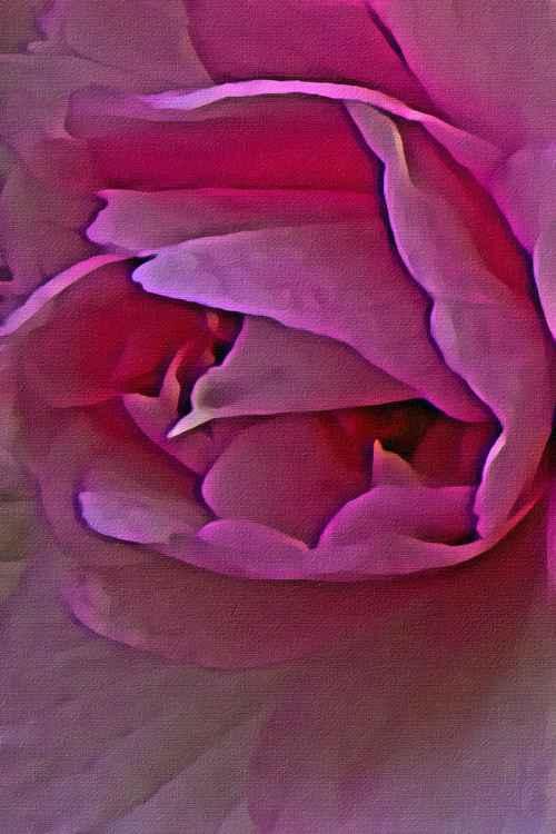 Pink Linen -