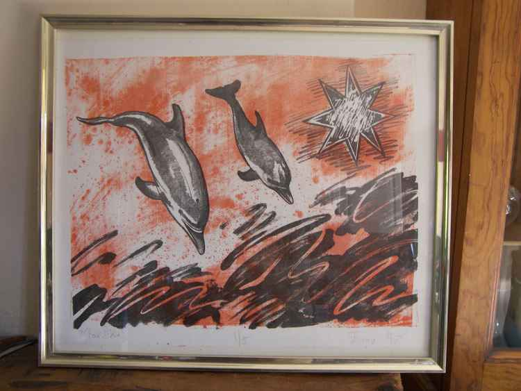 Dive (North Star Dolphins)