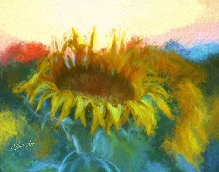 Sunflower Glow -