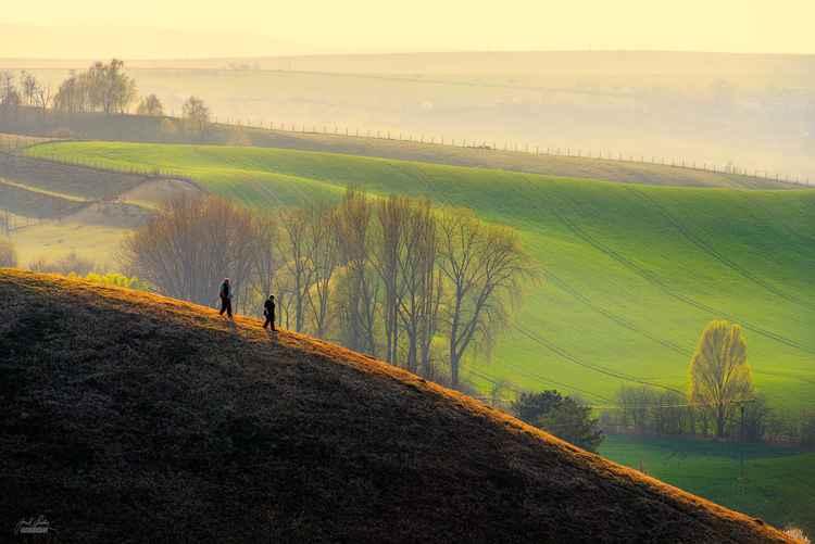 Evening walk in Moravia