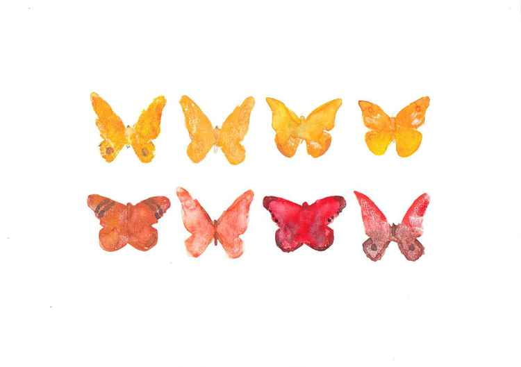 Eight Butterflies 3021OR1 -