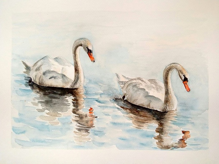 One of a kind original watercolor artwork - A couple of white swans - Image 0
