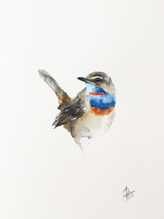 Bluethroat (Luscinia svecica) - Image 0