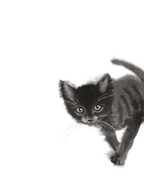 Touching Kitten - Image 0