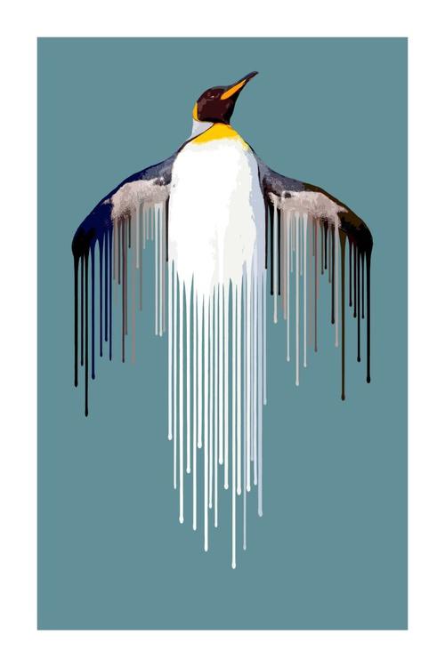 Penguin - Image 0