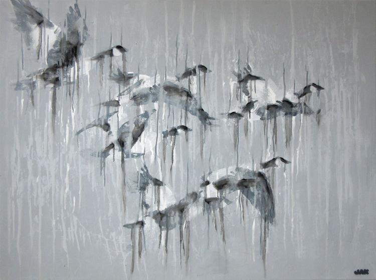 Barnacle geese visiting Sligo - Image 0