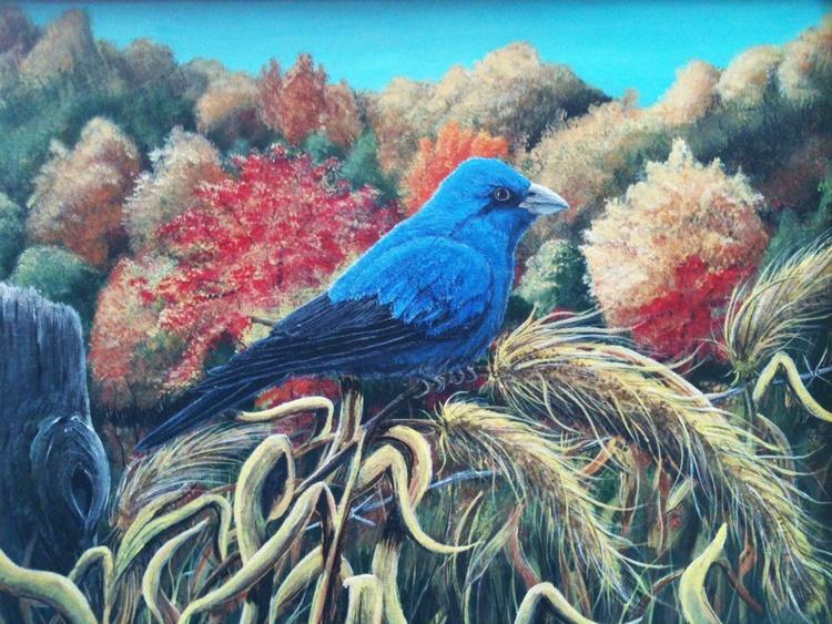Indigo Bunting in Autumn - Image 0