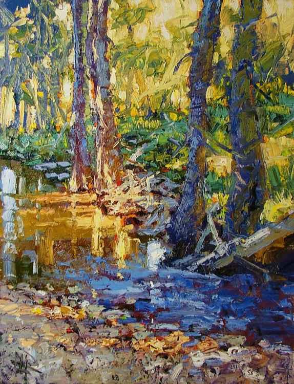 Illuminated Creek -