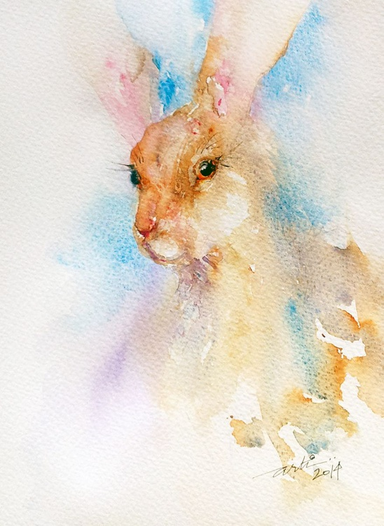 Brown Hare - Image 0