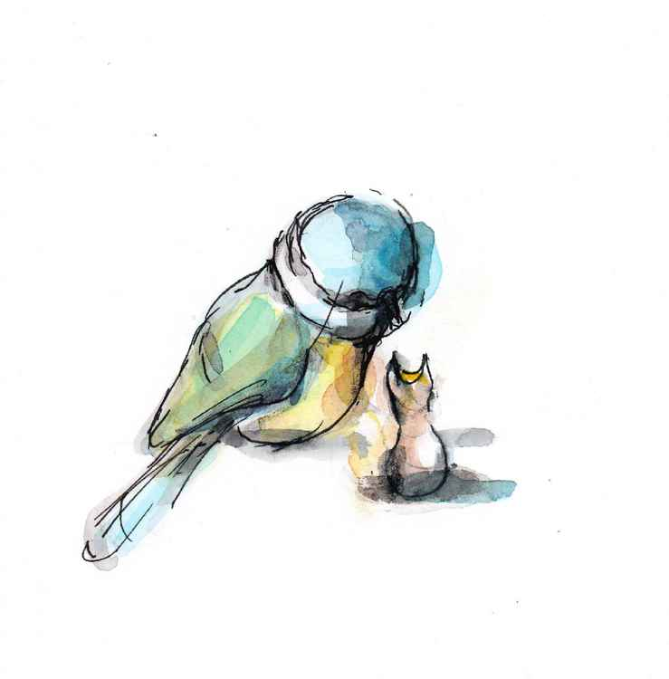 Blue tit and a chick 1515A