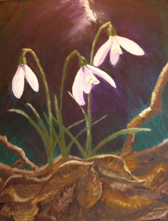 Snow drops heralds of spring - Image 0