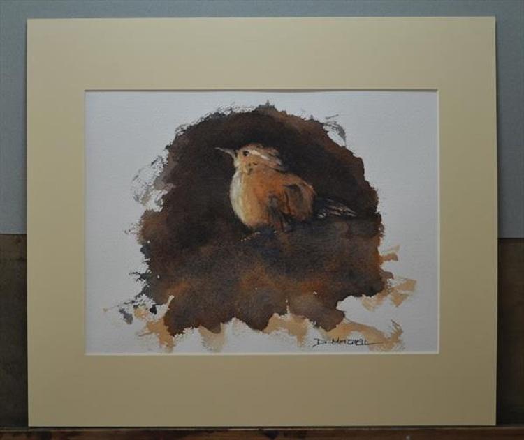 Little wren - Image 0