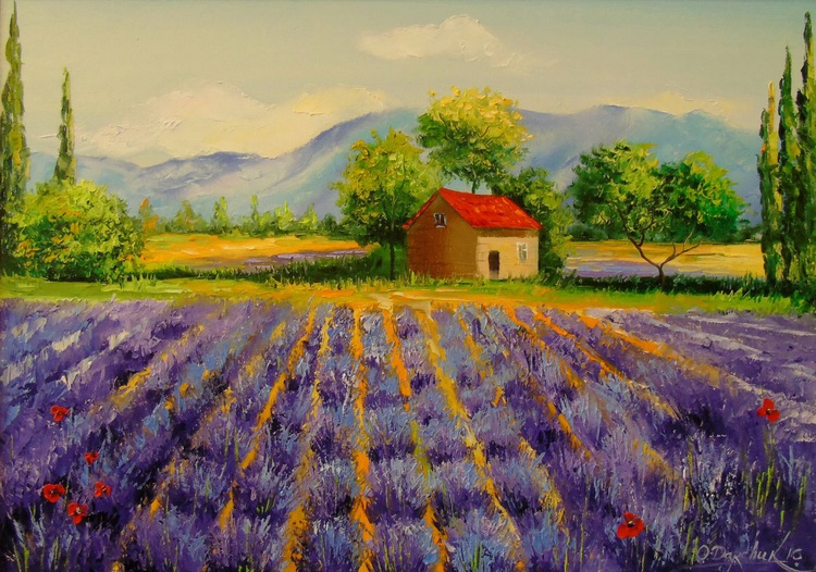 Lavender field near mountains - Image 0