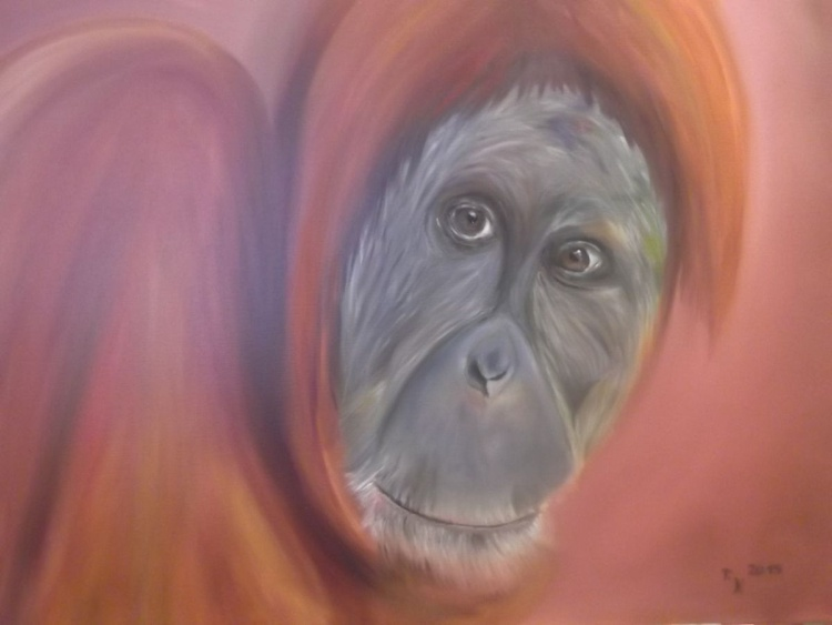 The Soul of an Orangutan - Image 0
