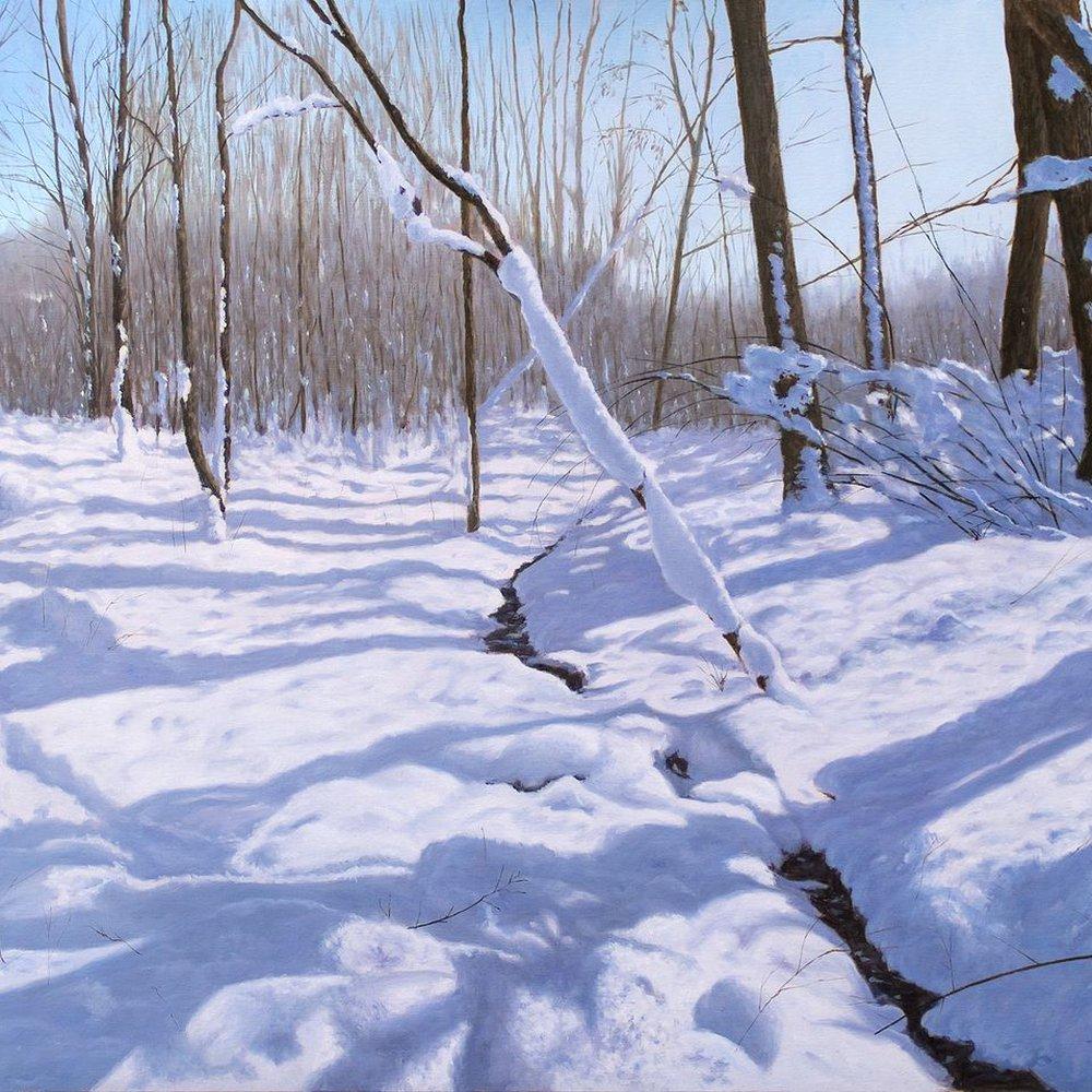 Stream in the Snow by Dejan Trajkovic