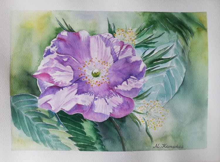 One of a kind original watercolor artwork - A rose hip flower -