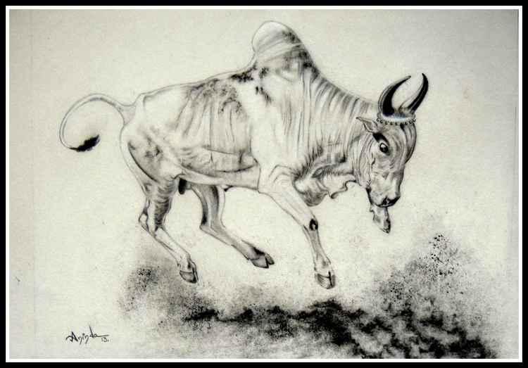 Dancing Bull -