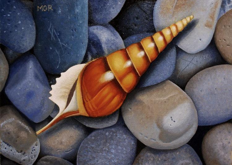 Sea shell and Pebbles - Image 0
