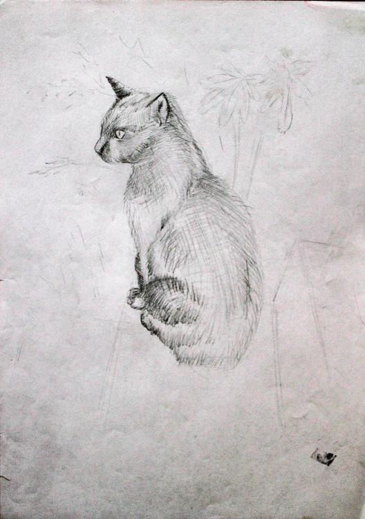 Cat Study 3 - Image 0