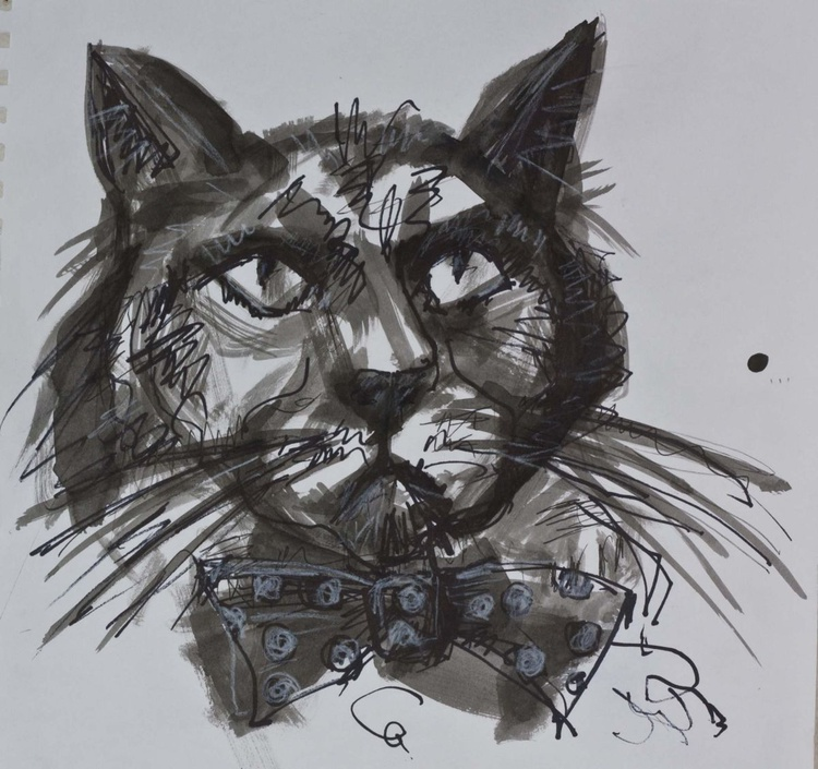 Cat with bow tie - Image 0