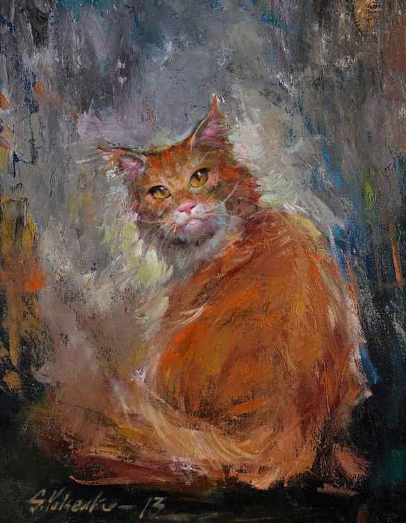 Red-headed cat