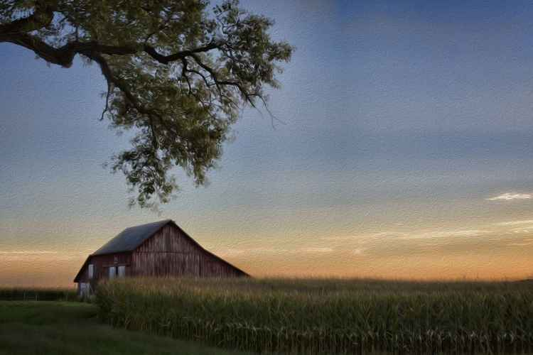 Prairie Farm in Late Afternoon -