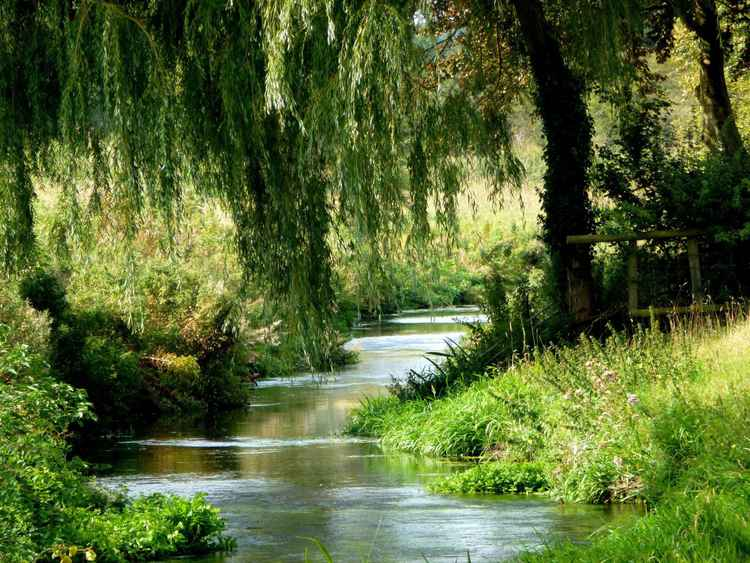 THE WILLOW STREAM.