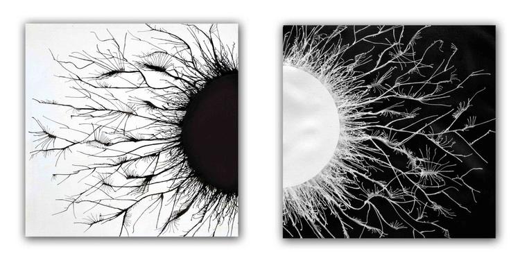 Opposites - Image 0