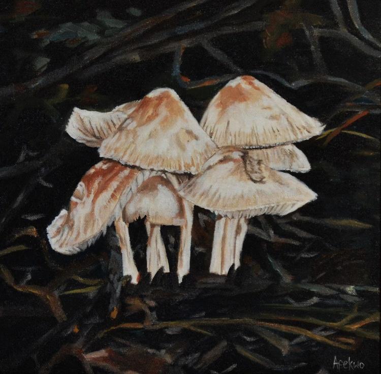 Mushroom village - Image 0