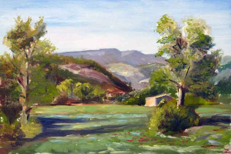 Landscape of Sisteron -