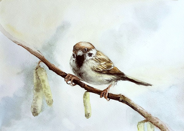 Sparrow in blue - Image 0